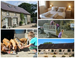 collage of images showing family friendly holidays at cwmcrwth farm