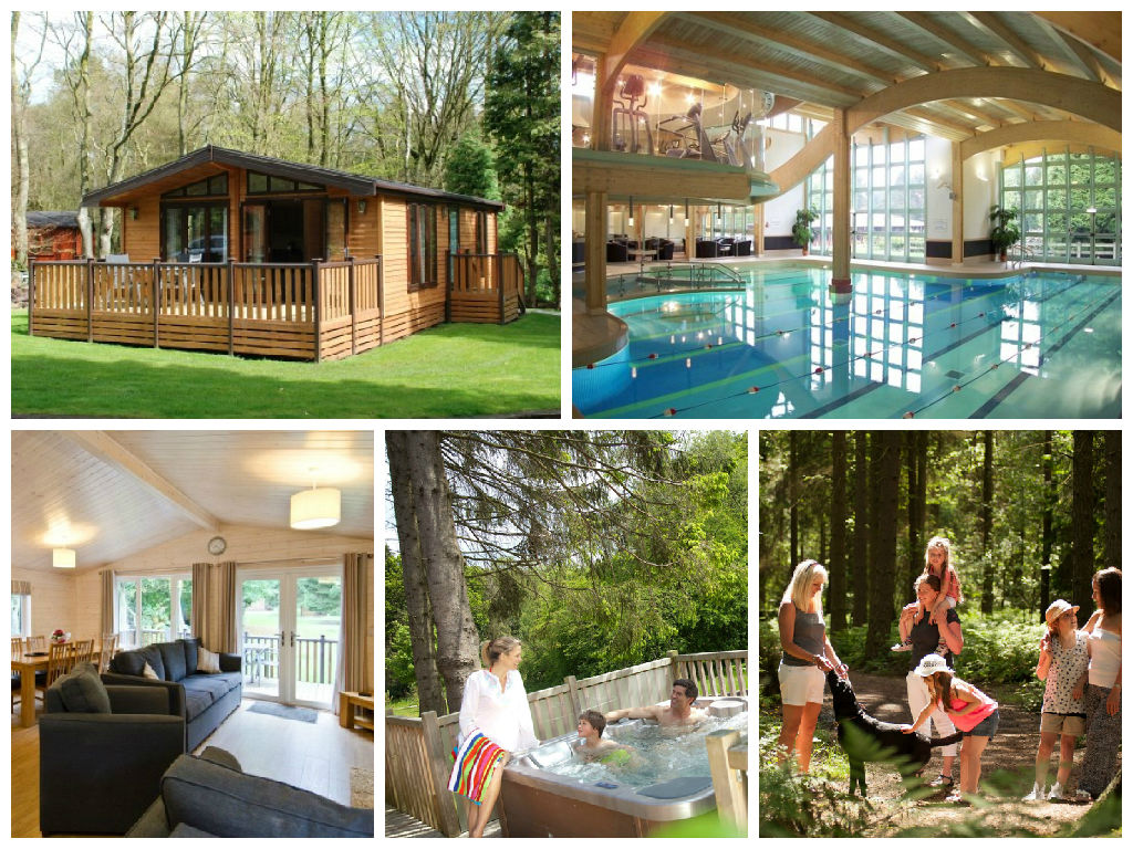 a collage of images showing darwin forest country park in the peak district