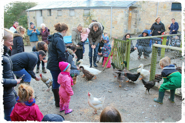Feeding the animals each morning was a highlight of the holiday