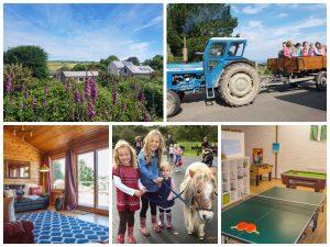 lower campscott farm collage