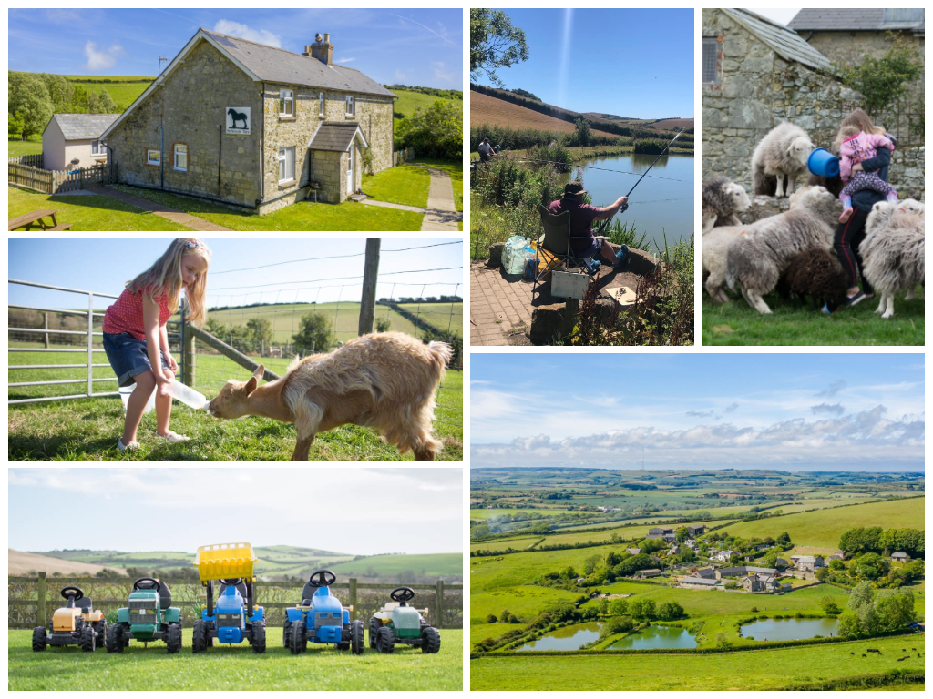 collage of images of child friendly farm stay nettlecombe farm