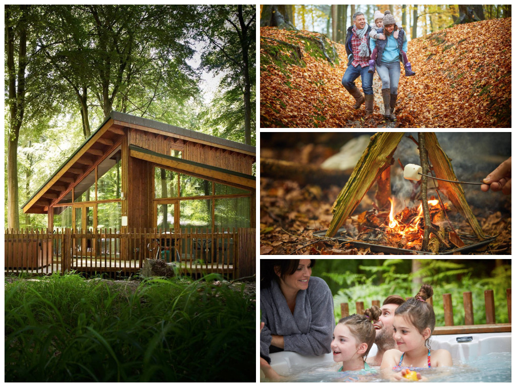 collage of images showing child friendly hampshire holidays at blackwood forest
