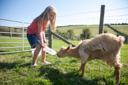 child and family friendly farm stays