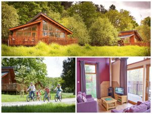 collage of child friendly lodge holidays at thorpe forest
