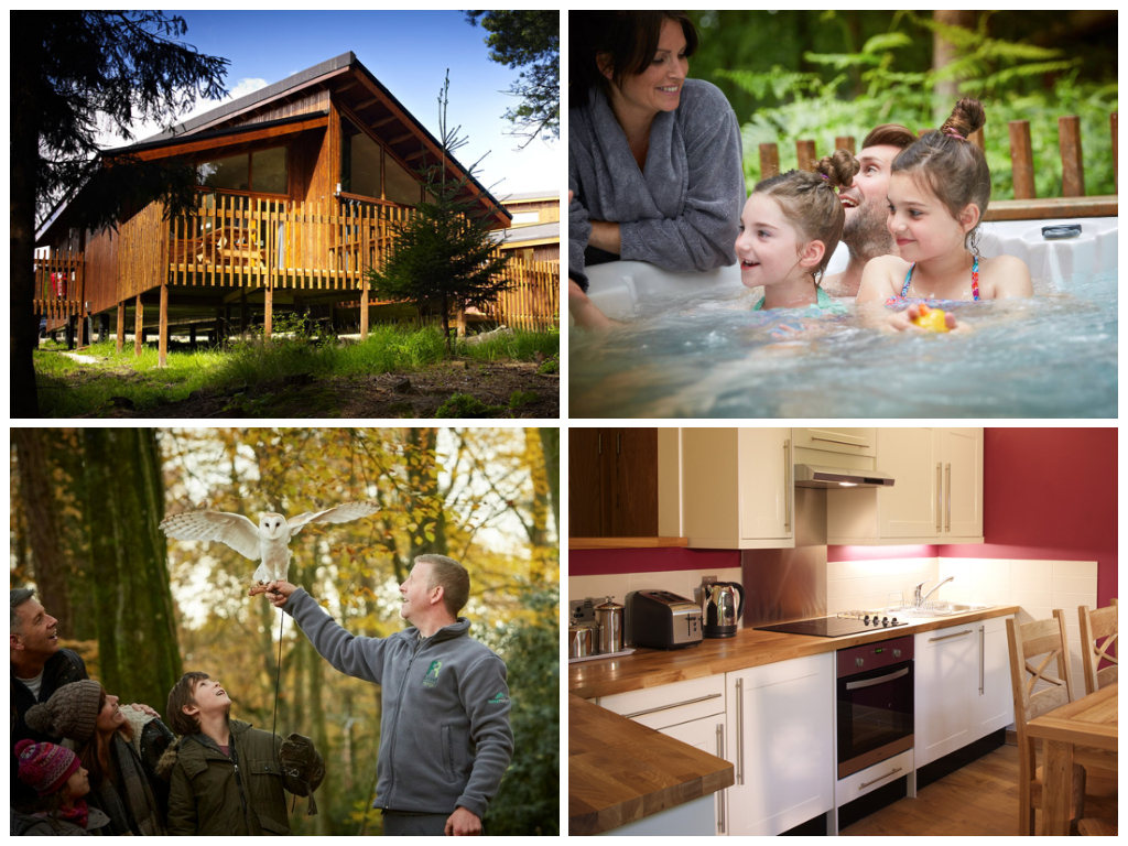 collage of images showing child friendly holidays at cropton forest